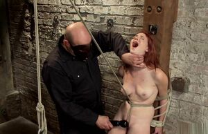 Sandy-haired in hog-tie suspension is..